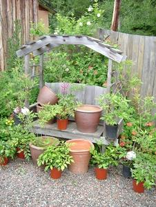 Patio Planter Ideer