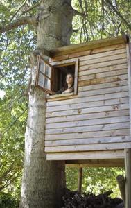 Ideer for a Tree Fort